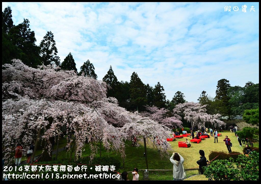 2014京都大阪賞櫻自由行.醍醐寺DSC_0162