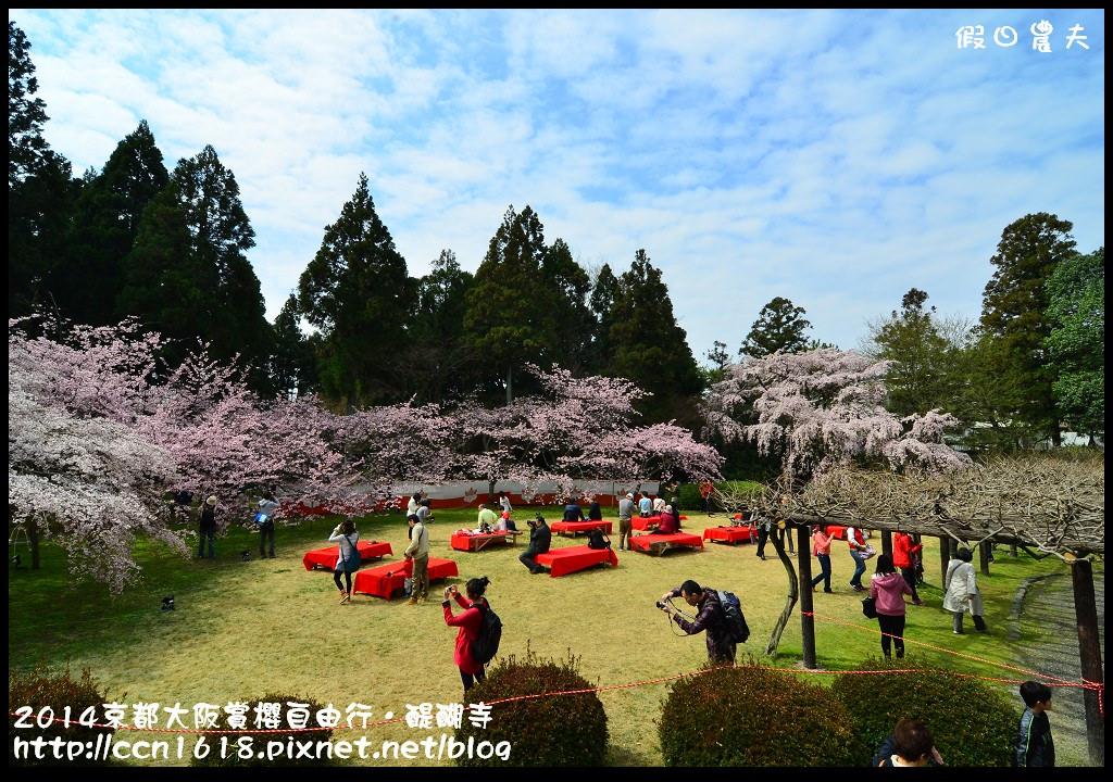 2014京都大阪賞櫻自由行.醍醐寺DSC_0168
