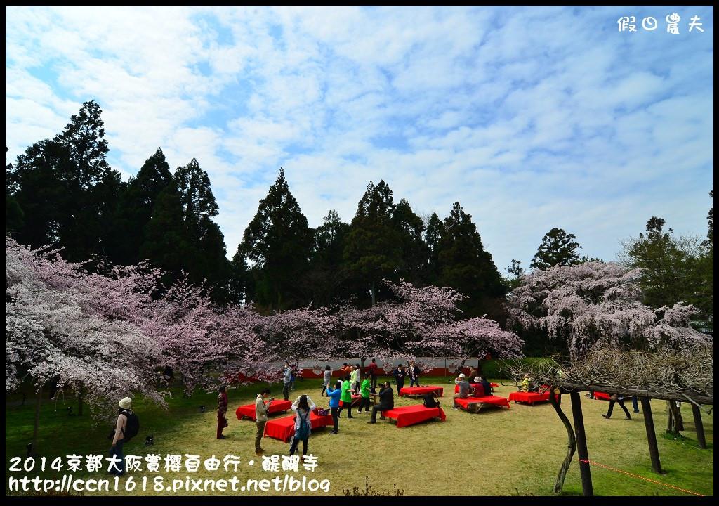 2014京都大阪賞櫻自由行.醍醐寺DSC_0173