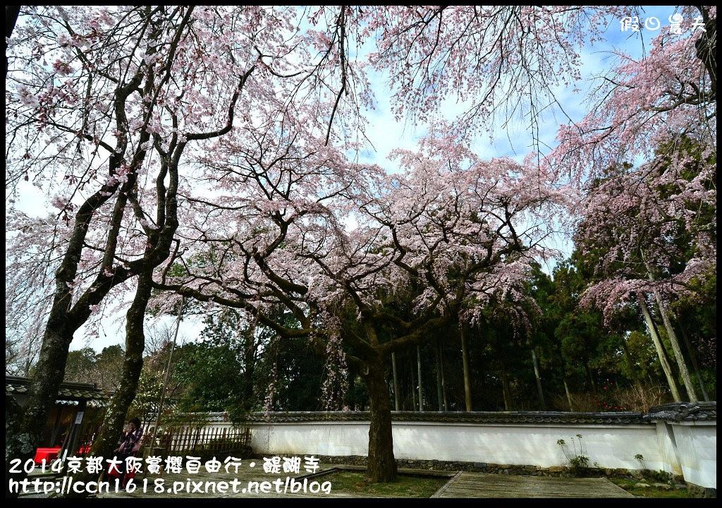 2014京都大阪賞櫻自由行.醍醐寺DSC_0204