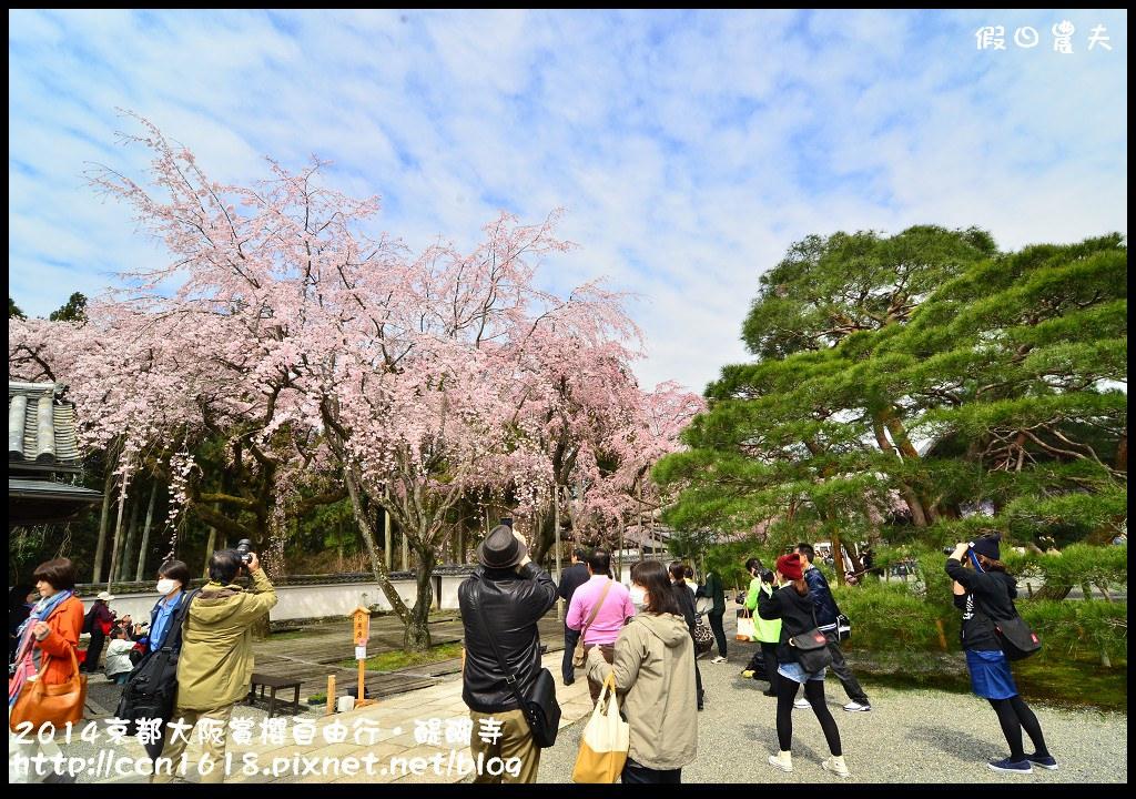 2014京都大阪賞櫻自由行.醍醐寺DSC_0217