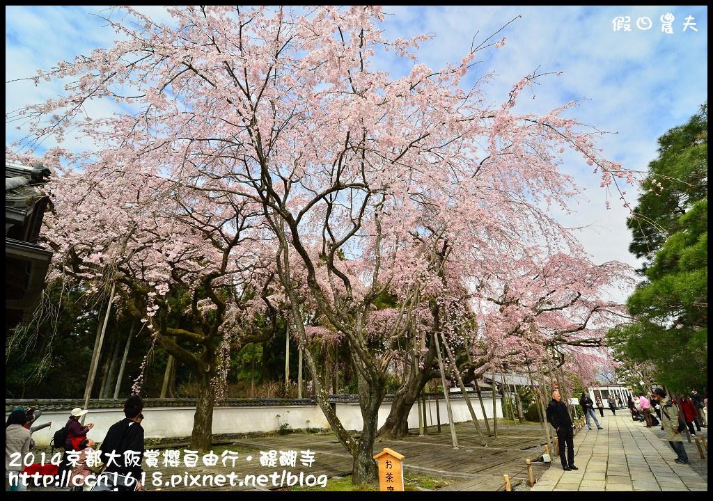 2014京都大阪賞櫻自由行.醍醐寺DSC_0226