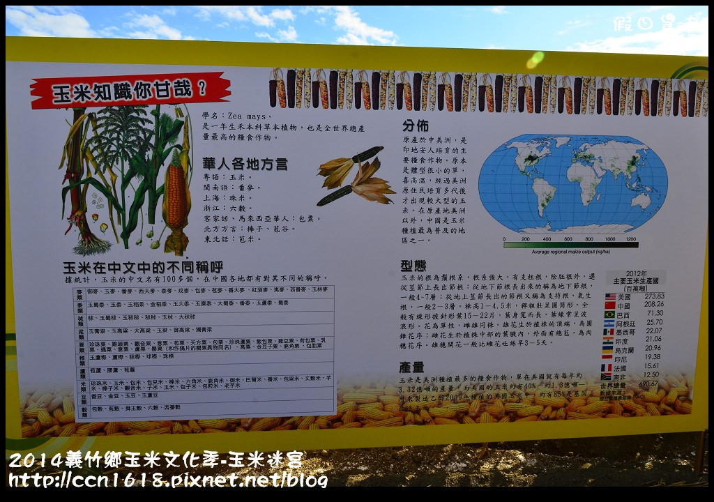 2014義竹鄉玉米文化季DSC_5941