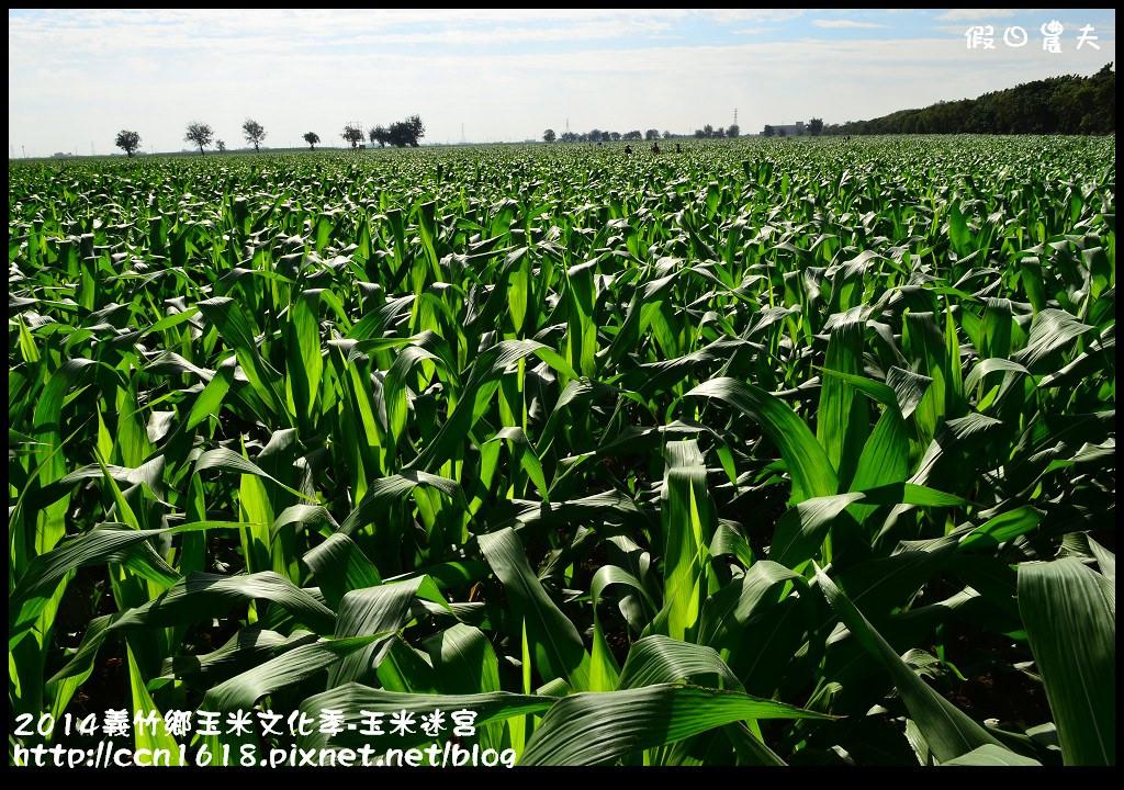 2014義竹鄉玉米文化季DSC_5952