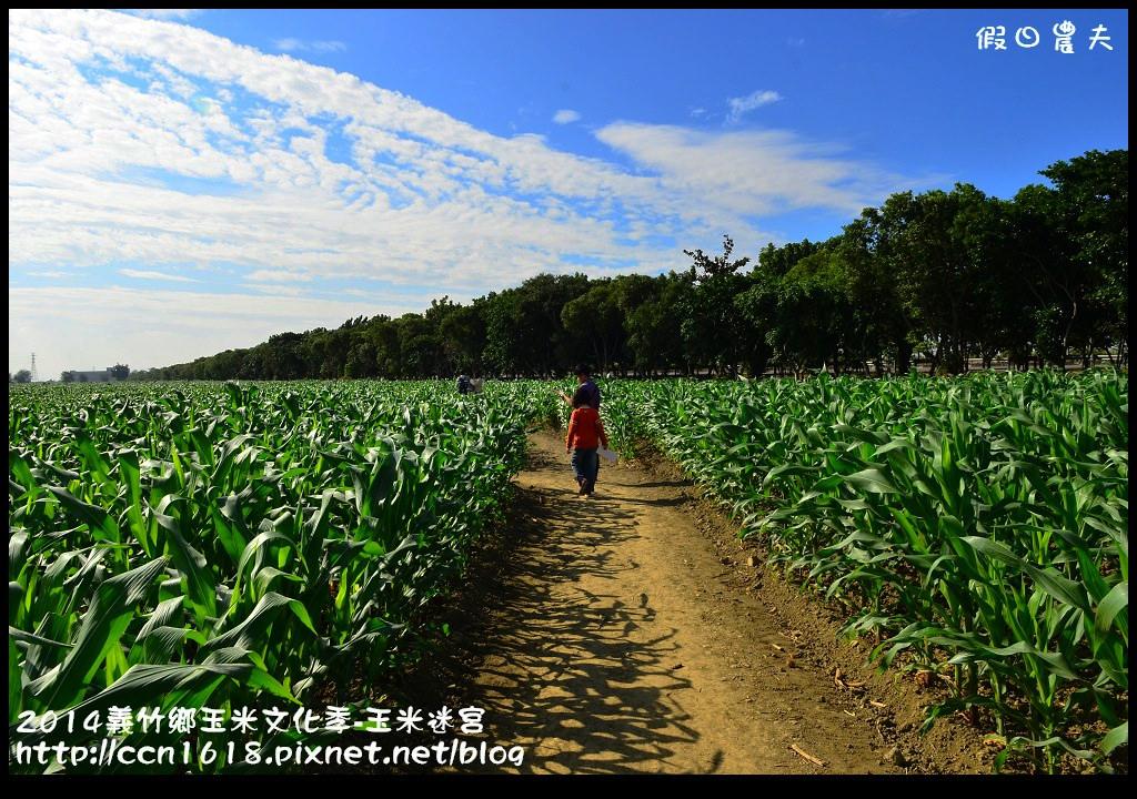 2014義竹鄉玉米文化季DSC_5953