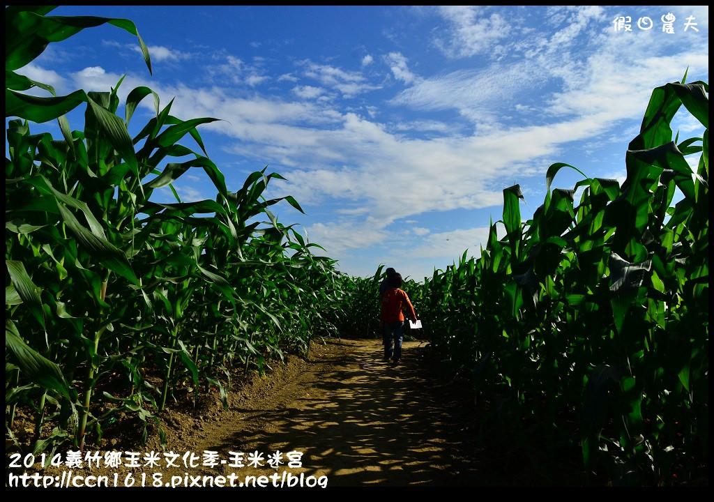 2014義竹鄉玉米文化季DSC_5965