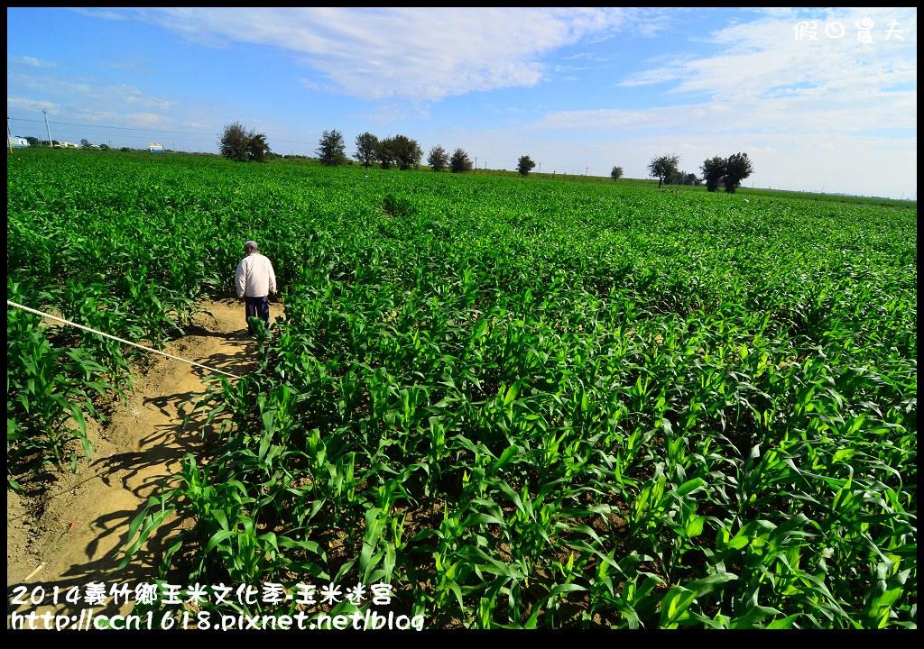 2014義竹鄉玉米文化季DSC_5999