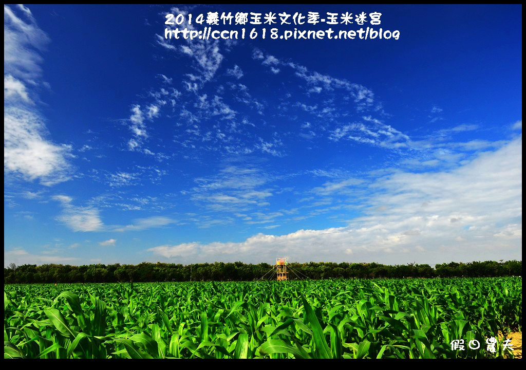 2014義竹鄉玉米文化季DSC_5975