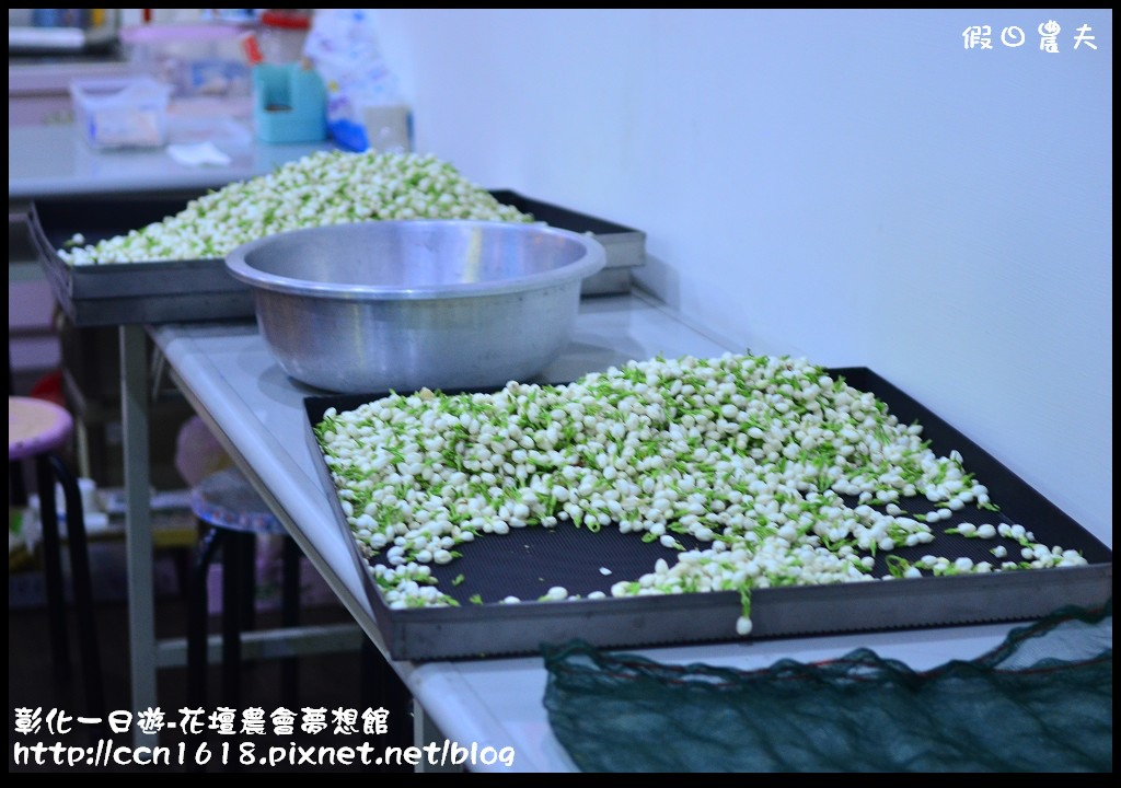 彰化一日遊-花壇農會夢想館DSC_7701