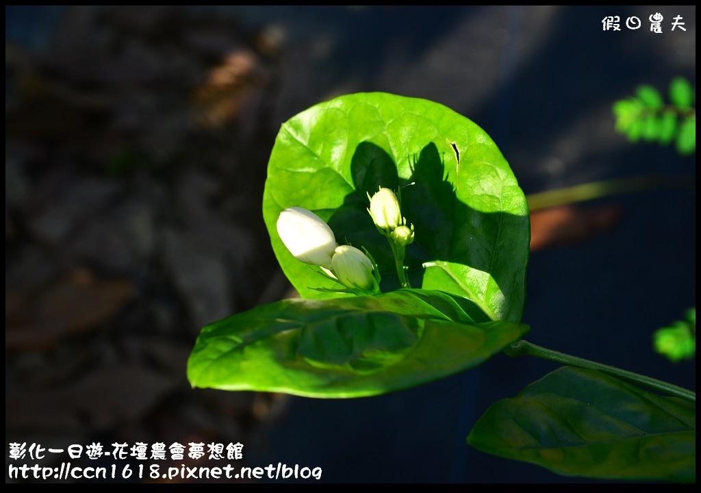 彰化一日遊-花壇農會夢想館DSC_7722