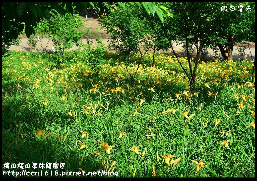 梅山橫山屏休閒園區DSC_7994
