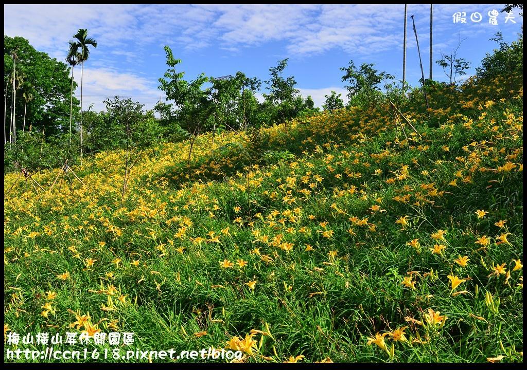 梅山橫山屏休閒園區DSC_8005