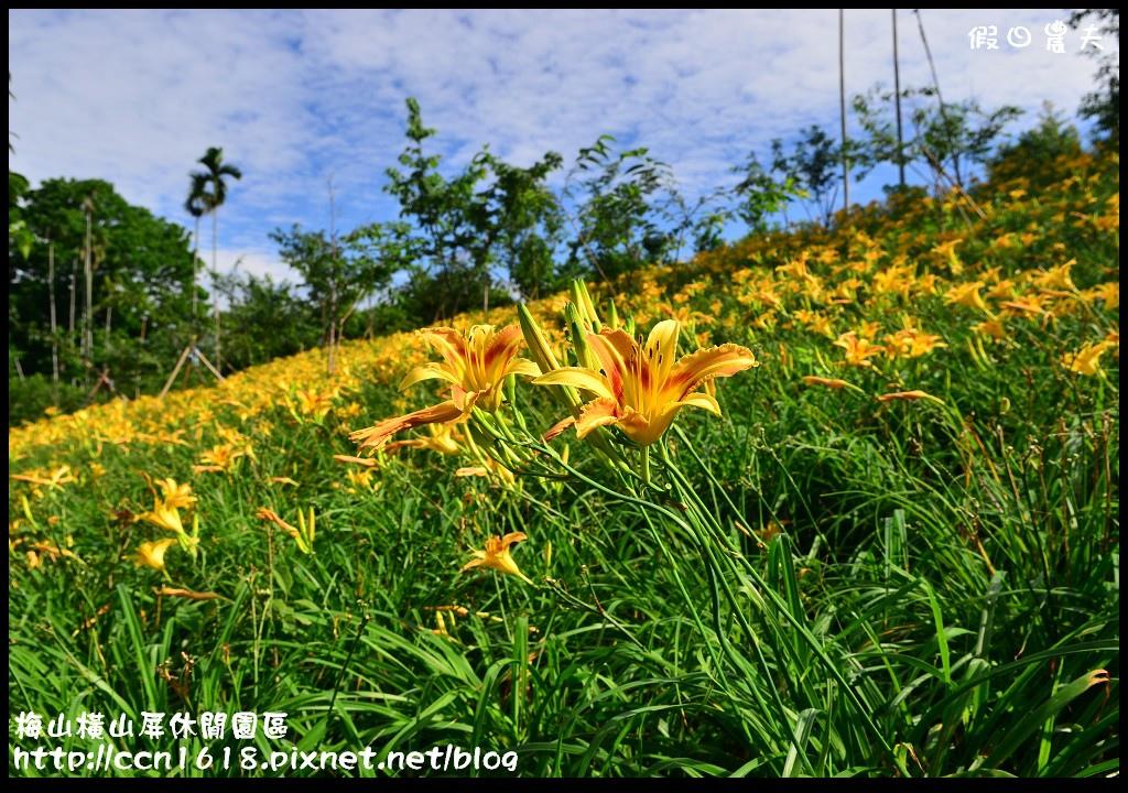 梅山橫山屏休閒園區DSC_8007