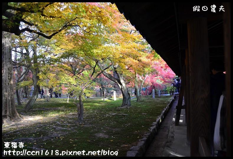 東福寺DSC_5036