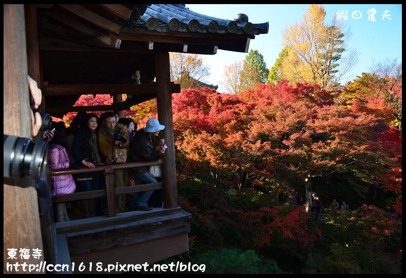 東福寺DSC_5133