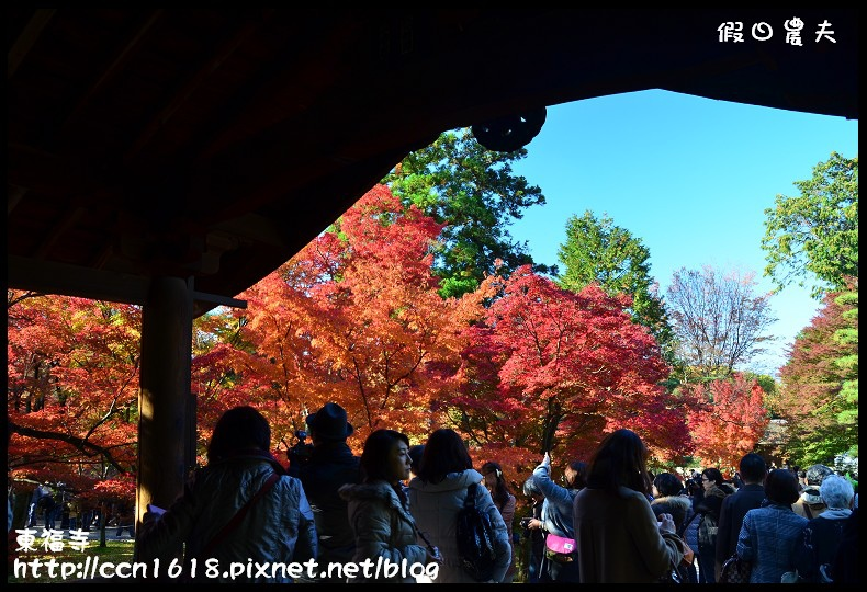 東福寺DSC_5195