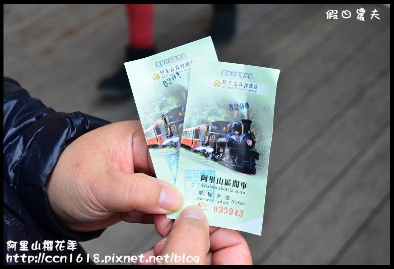 阿里山櫻花季DSC_6775