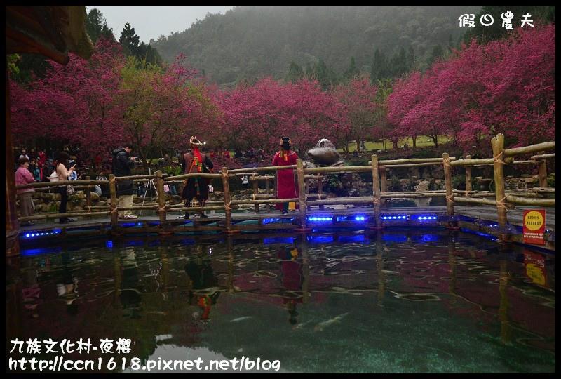 九族文化村-夜櫻DSC_4790