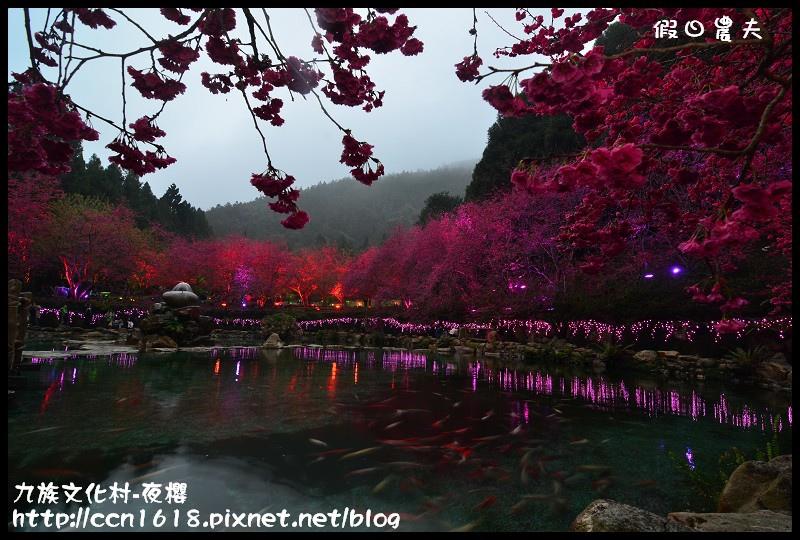 九族文化村-夜櫻DSC_4794