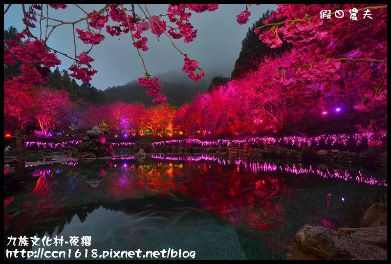 九族文化村-夜櫻DSC_4805