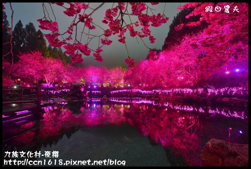 九族文化村-夜櫻DSC_4814
