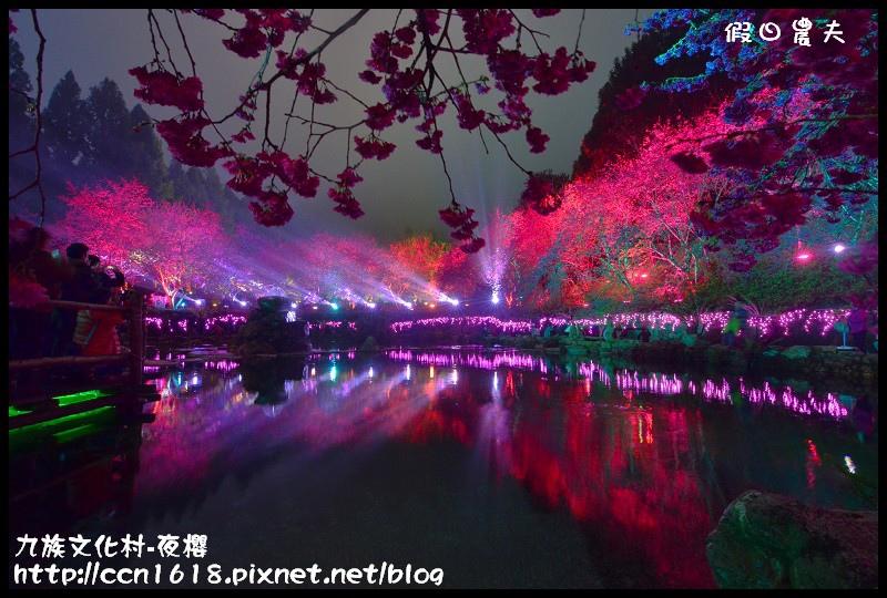 九族文化村-夜櫻DSC_4823