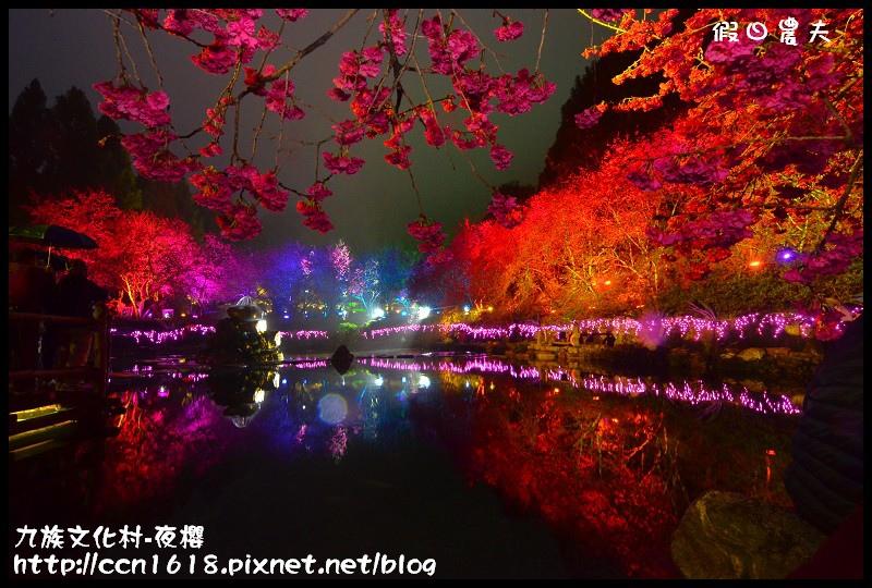 九族文化村-夜櫻DSC_4892