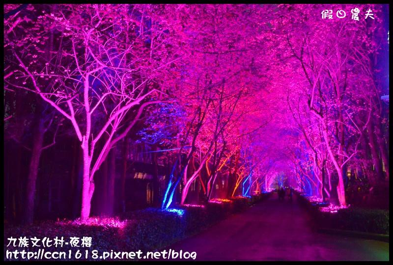 九族文化村-夜櫻DSC_4991