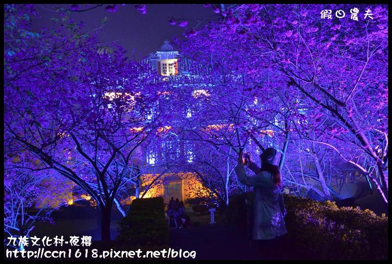 九族文化村-夜櫻DSC_5085