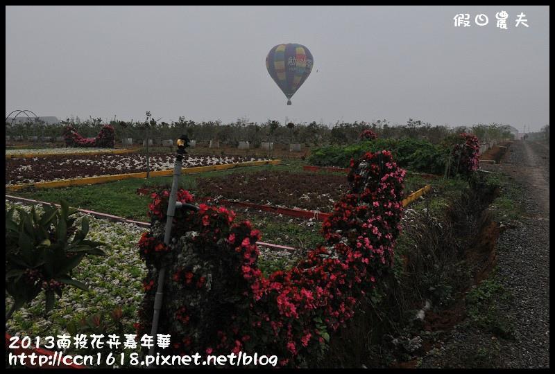 2013南投花卉嘉年華DSC_0331