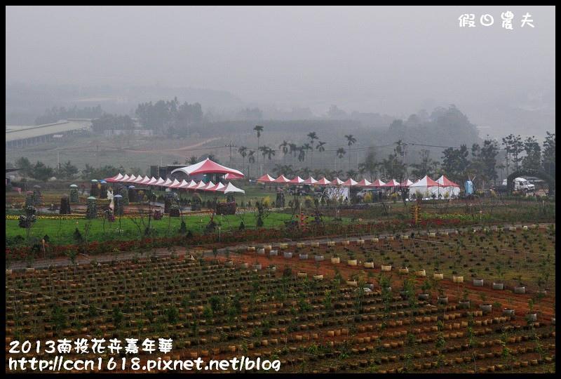 2013南投花卉嘉年華DSC_0370