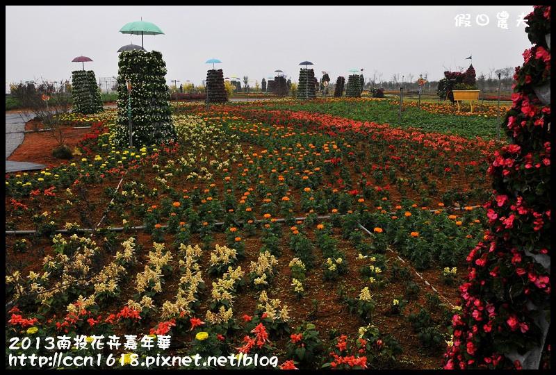 2013南投花卉嘉年華DSC_0431