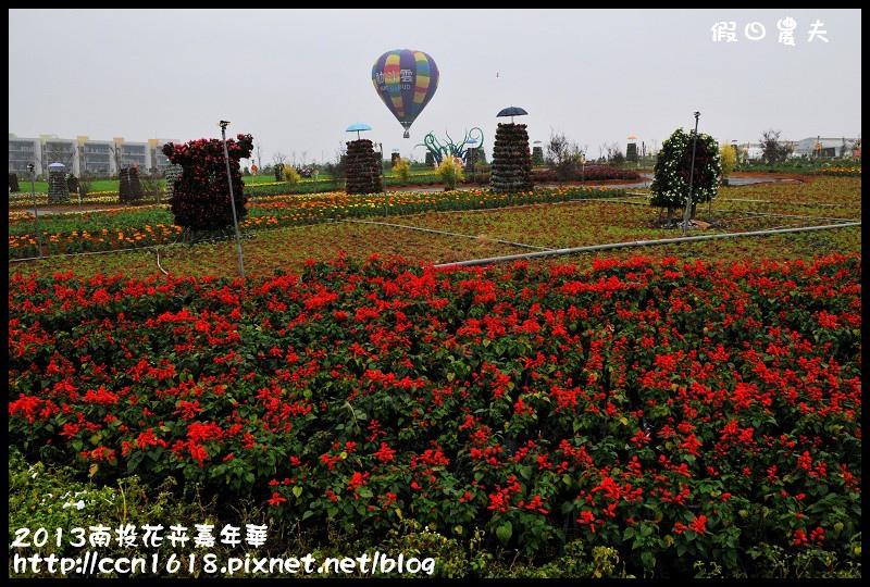 2013南投花卉嘉年華DSC_0436