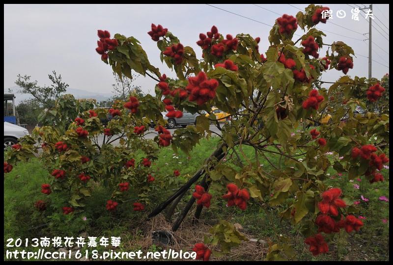 2013南投花卉嘉年華DSC_0575