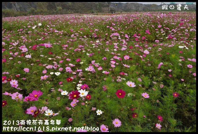 2013南投花卉嘉年華DSC_0576