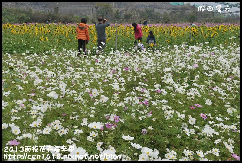 2013南投花卉嘉年華DSC_0583