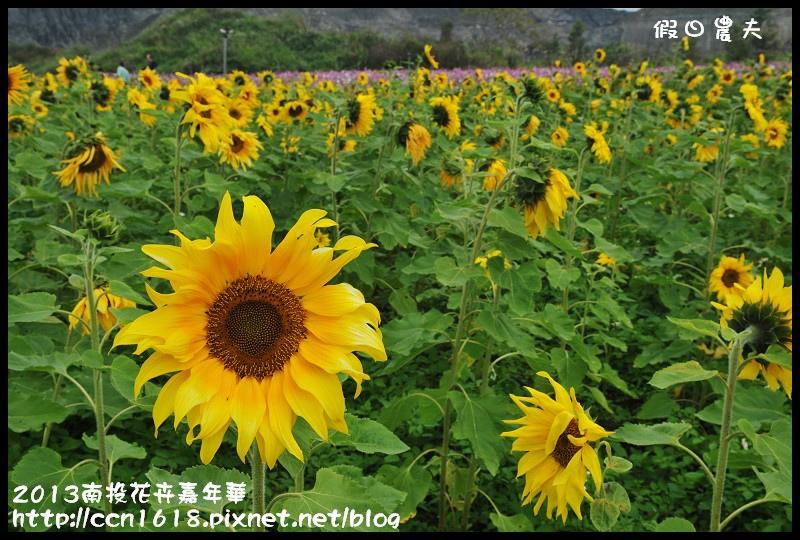 2013南投花卉嘉年華DSC_0596
