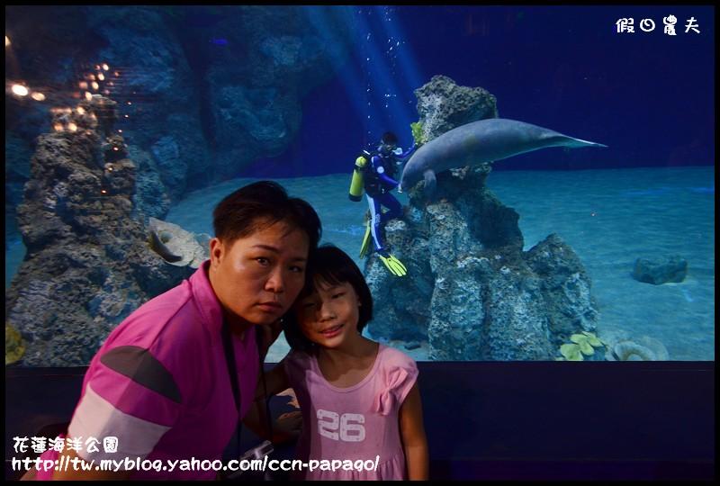 花蓮海洋公園_DSC6708