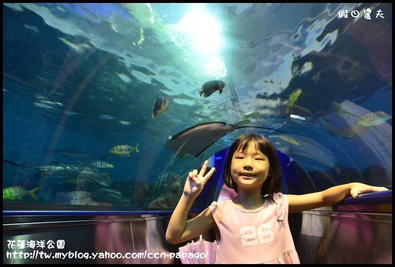 花蓮海洋公園_DSC6760