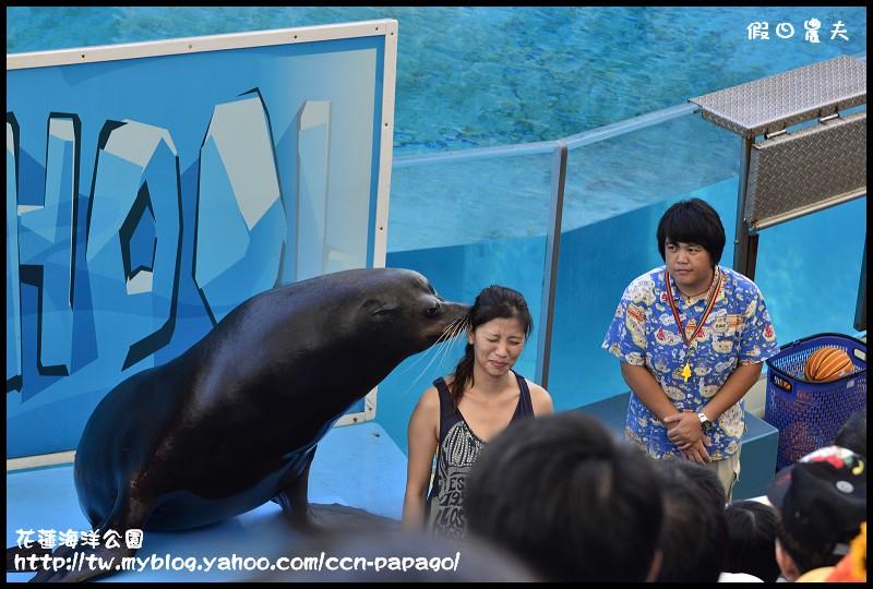 花蓮海洋公園_DSC6791