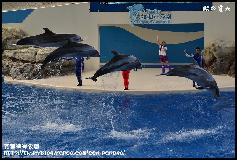 花蓮海洋公園_DSC6848
