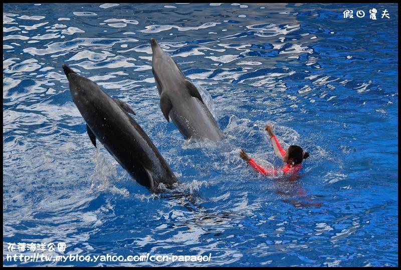 花蓮海洋公園_DSC6860