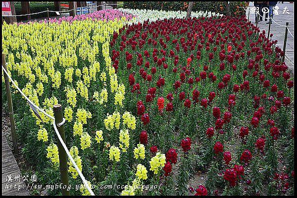 溪州公園DSC_2399