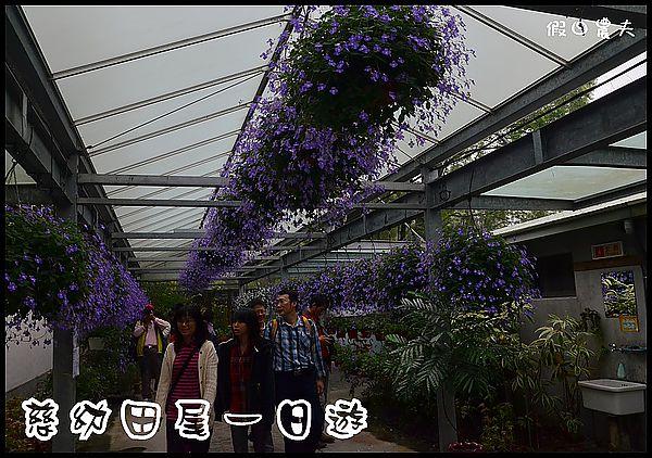 田尾DSC_0750