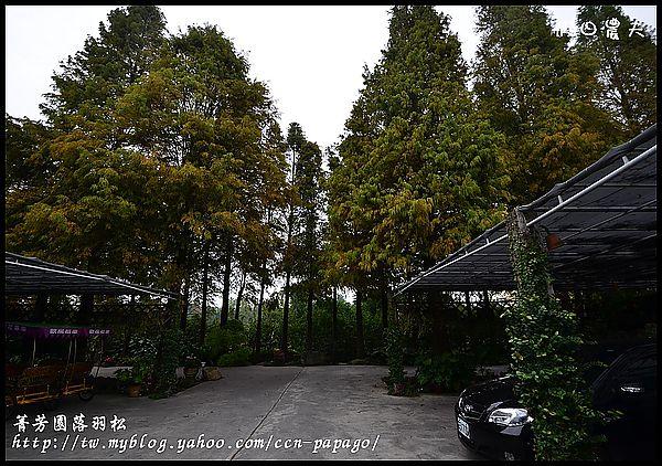菁芳園DSC_7030