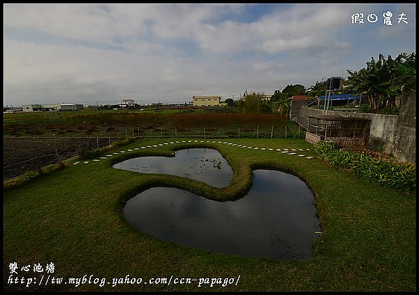 雙心池塘DSC_7865