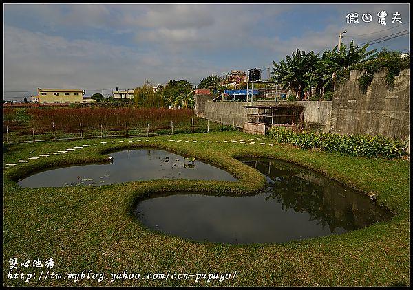 雙心池塘DSC_7851