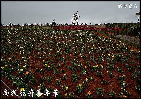 南投花卉嘉年華DSC_6369