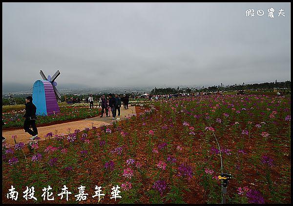 南投花卉嘉年華DSC_6386