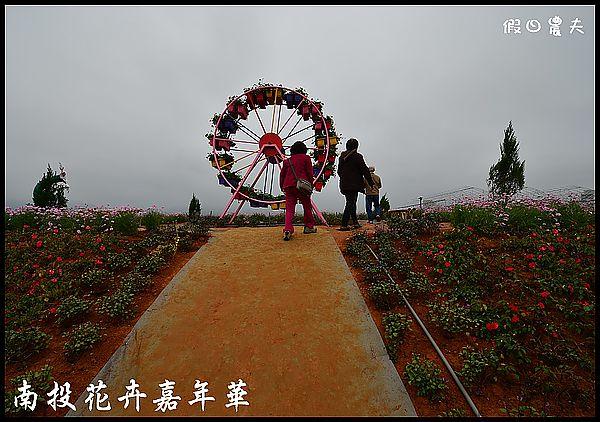南投花卉嘉年華DSC_6397